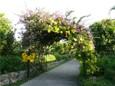トロピカルフルーツパーク入口